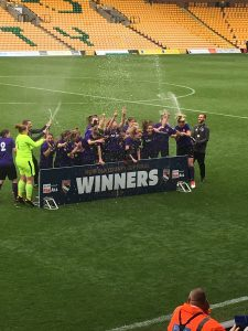 View from the stands - The ladies celebrating their cup final win