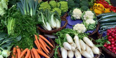 Lots of fresh produce ingredients